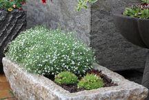 Tröge, Pflanzkübel, Pflanzgefäße / Tröge, Pflanzkübel und Gefäße aus Naturstein