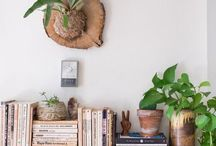 plants on cavelike wall