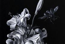 черно белые картинки