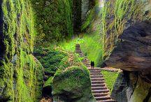 prírodná krása