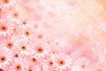 flower & romantic