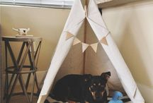 DIY FOR DOGS