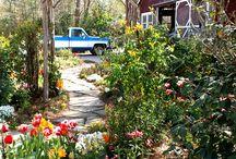 the secret garden / gardening. plants. flowers. herbs.