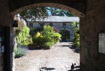 Bijzondere accommodaties / Bijzondere accommodaties in Ierland: kastelen, vuurtorens, charmant gelegen B&B's etc.