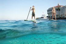 Water Sports / Water activities offered on Catalina Island