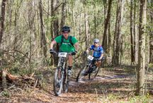Tracks & Trails / Grab your bike or running shoes and explore the gorgeous trails of Ocala/Marion County, Florida!