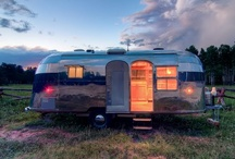 Paul's Airstream Dream / Professor Radar desperately wants an airstream to cruise the country in. Point taken, Professor.  / by Hilary Browning
