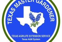 texas garden / by Roger Livingston