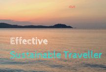 Eco-Friendly Travel / Eco Friendly | Sustainable Travel | Environmentally Friendly Travel | Travel Blogger | Northern Lauren | Eco-friendly Travel Guides | How to care for the environment while travelling