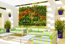 Outdoor Tropical Vertical Gardens