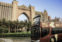 Big Bus Around the World / Big Bus is a great way to explore a city while on vacation!  / by Viator.com