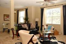 Pet Friendly Apts-Tennessee / Pet Friendly Apartments in Tennessee (TN).