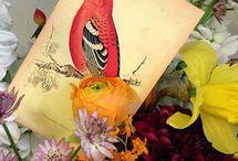 FLORES | ELISABETH BLUMEN / ELISABETH BLUMEN crea arreglos florales muy especiales para enviar en una fecha señalada o a una persona especial, para dar las gracias, para dar la enhorabuena, para celebrar un acontecimiento especial…  También prepara semanal, quincenal o puntualmente arreglos florales para empresas y establecimientos, de acuerdo a las necesidades y estética del lugar.  #Arreglos florales #Decoración floral #Regalo San Valentín #Decoración del hogar #Festivos y Acontecimientos #Decoración de Eventos #Bodas