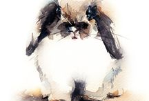 Cat&bunny