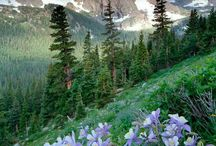 """Colorful Colorado / DeBourgh is proud to be housed within """"Colorful Colorado"""" and wants to share some of the beauty this state has to offer. Come check it out... because Colorado is breathtaking!"""