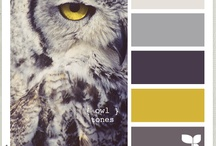 color # YELLOW GREY