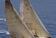 Sailing / by Carla Van Galen