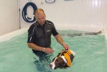 Hydrotherapy helps us all!