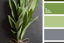 Color Palettes / Color palettes for inspiration for your brand design.