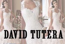 David Tutera by Mon Cheri  / The David Tutera collection of gowns for Mon Cheri embodies his signature style, traditional yet unapologetically glamorous wedding dresses. Long trains and fitted bodices are staples in this collection of elegant wedding dresses. Bring the drama and sophistication of Hollywood glamor to your wedding day. This collection includes a wide selection of dresses made using only the highest quality materials. / by MissesDressy