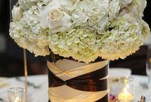 Future Wedding / by Shae Danielle