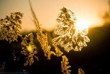 Yashmina_Lorente Photography