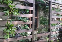 vertical gardening / vertical gardening