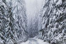 ❄️ winter