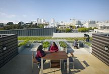 Things We Like: Green Roofs