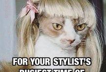 Funny Stylist Problems