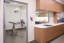 Veterinary Treatment areas