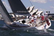 SOLAS big boat challenge 2013 / by Andrea Francolini