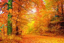 podzim - krajina