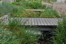 Stormwater rain garden