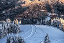winter wonderland inspirasjon