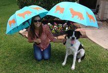 Adorable Umbrellas
