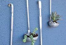 Case per cactus