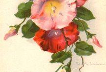 catherine klein flores diversas