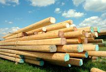 Tartak mobilny Kruca FUKS / Usługi tartaczne Wood Mizer TRAK