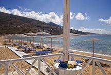 Beach Bar - Pool Bar