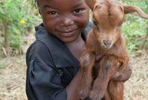 Παιδιά με Ζώα - Kids with Animals