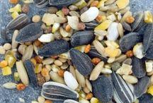 Nourritures oiseaux / Un vaste choix de graines et graisses pour le plus grand régal des oiseaux du jardin.