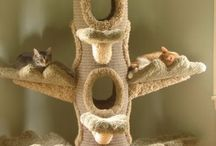 Kitty Furniture ideas