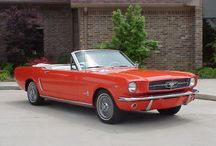 mustang sally / by finch