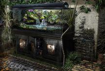 Akwarriu-terrarium