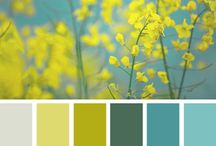 Colour Palette Inspiration / Colours, Shades and palette inspiration