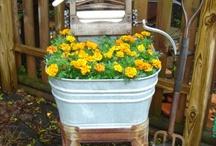 Garden Ideas / by Carolyn Nicholson Dunkin