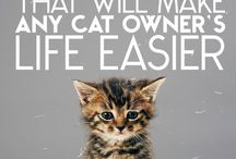 lifehacks for cats