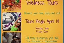 AVL Wellness Tour
