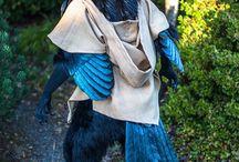 A Giant Raven Costum